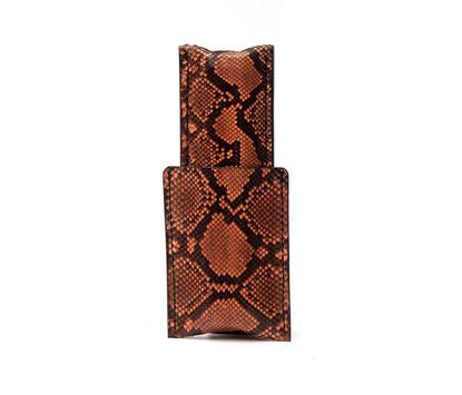 Picture of 1/1 Cigar Case - Lizard