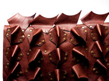 Picture of Leather Dog Armor Brown Calf